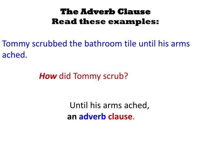The Adverb Clause