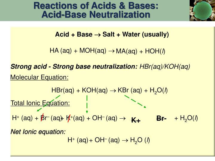 Reactions of Acids & Bases: