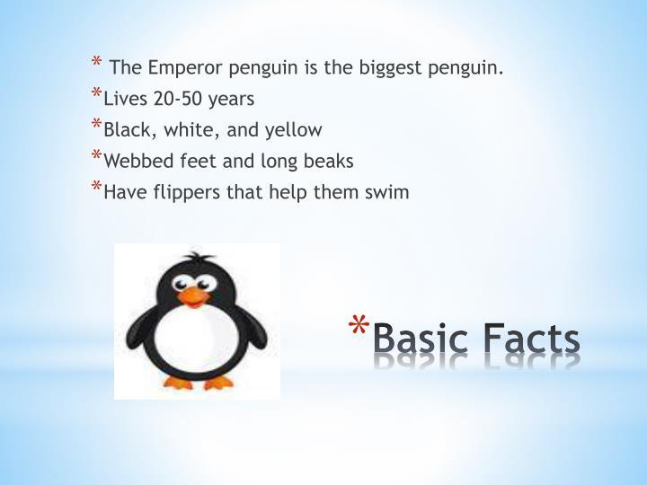 The Emperor penguin is the biggest penguin.