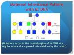 maternal inheritance pattern with mt dna