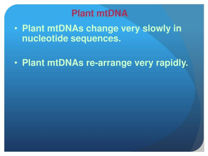 Plant mtDNA