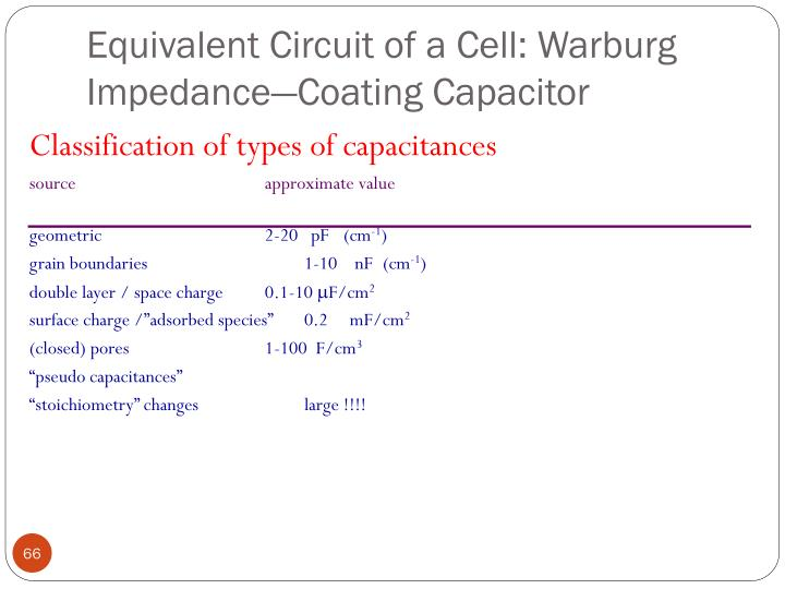 Equivalent Circuit of a Cell: Warburg Impedance—Coating Capacitor