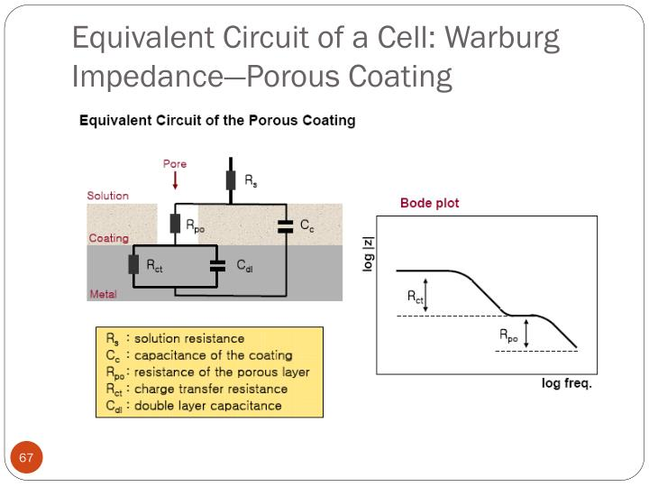 Equivalent Circuit of a Cell: Warburg Impedance—Porous Coating