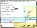 equivalent circuit of a cell warburg impedance1
