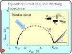 equivalent circuit of a cell warburg impedance2