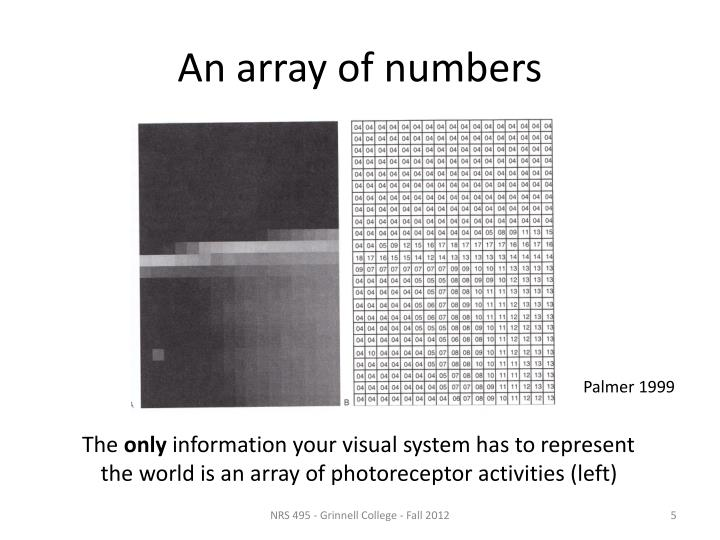 An array of numbers