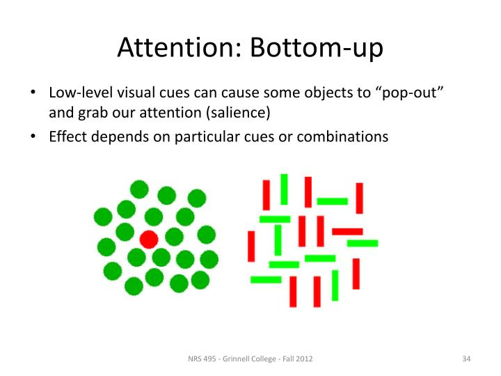 Attention: Bottom-up