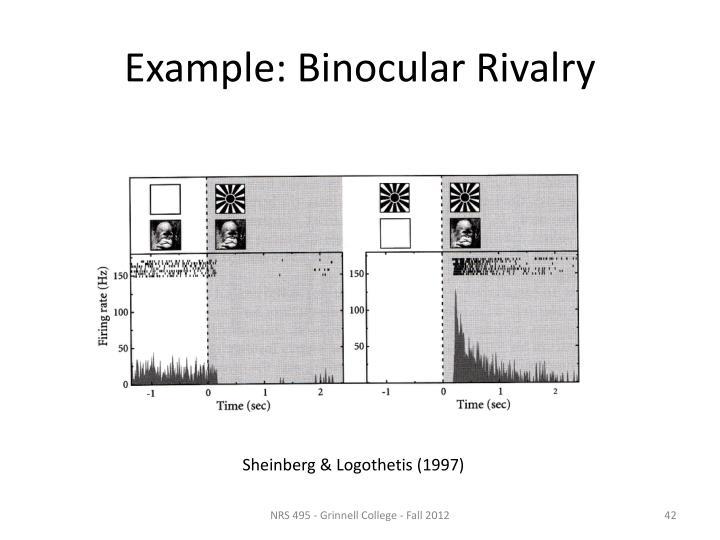 Example: Binocular Rivalry