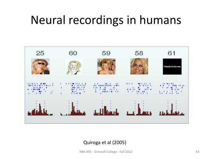 Neural recordings in humans