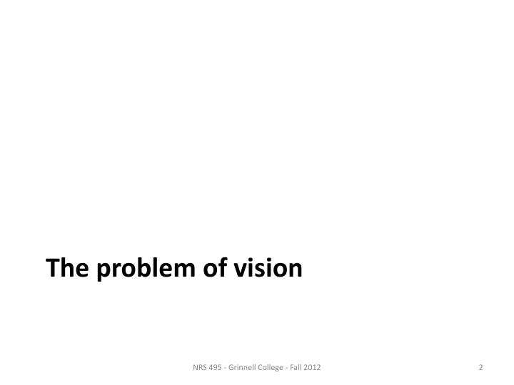 The problem of vision