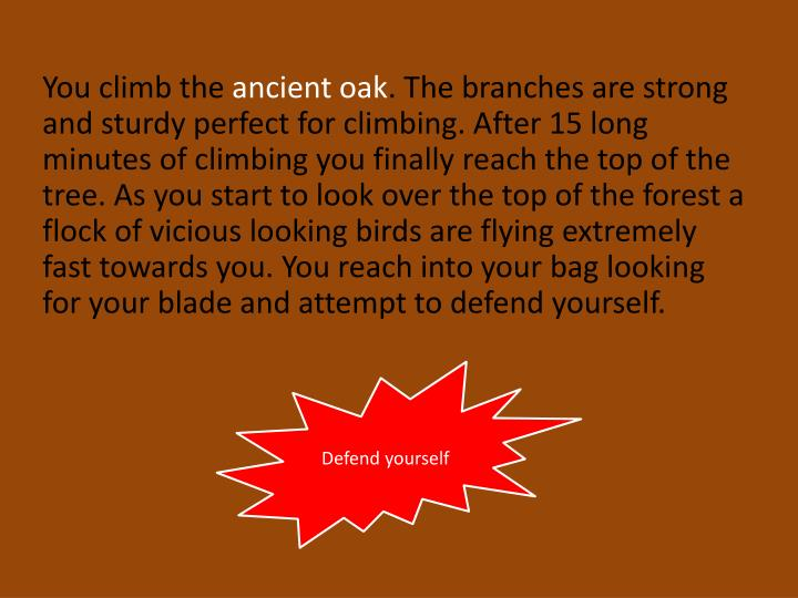 You climb the