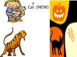 cat new