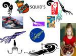squid s