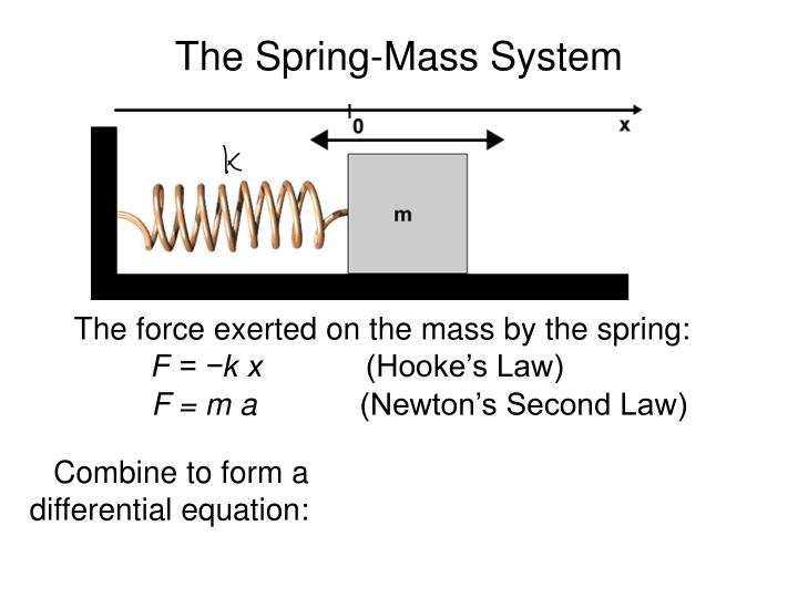 The Spring-Mass System
