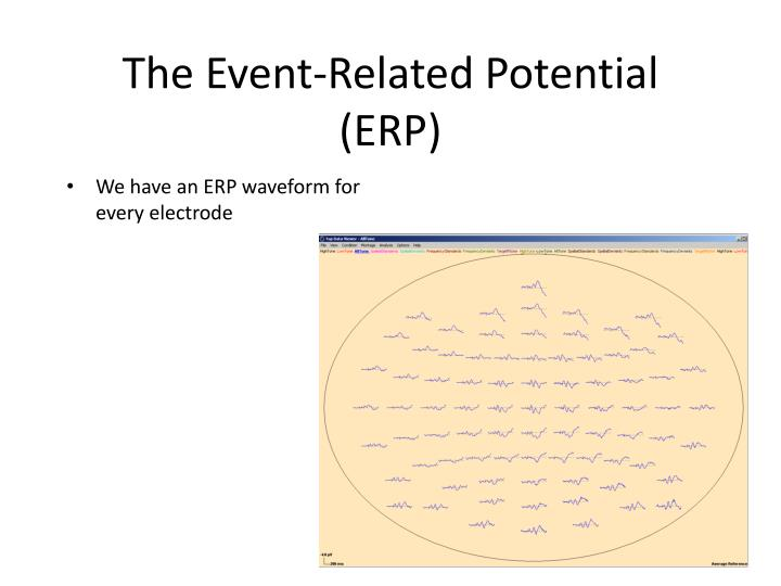 The Event-Related Potential (ERP)