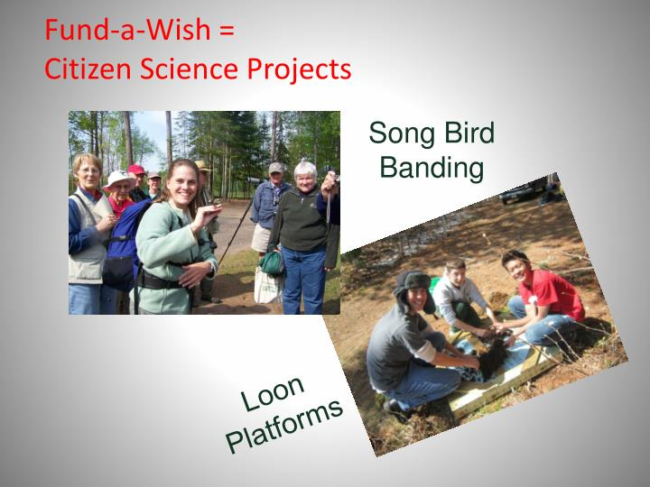 Fund a wish citizen science projects