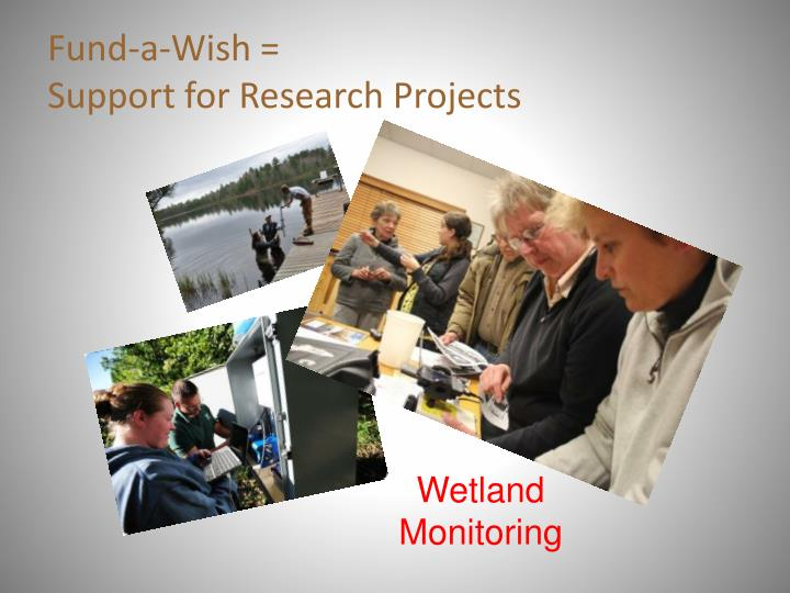 Fund a wish support for research projects