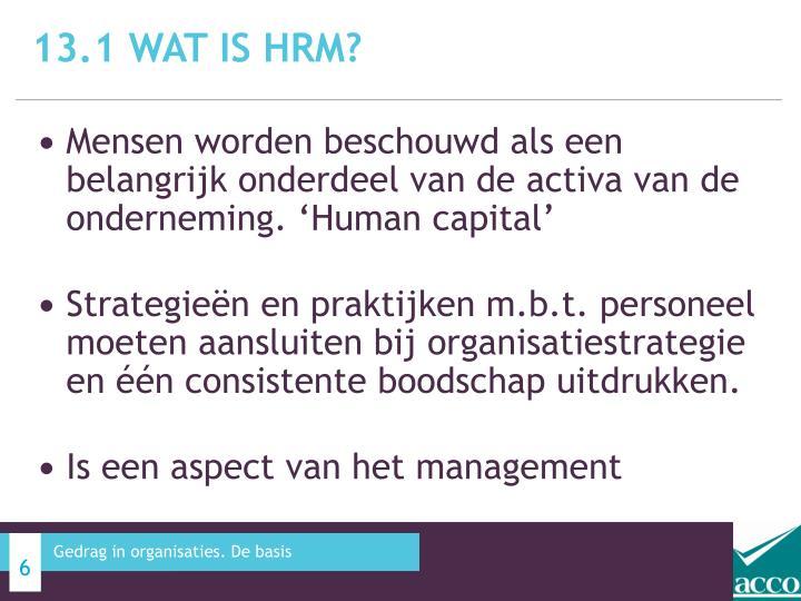 13.1 Wat is HRM?