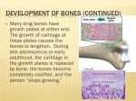 development of bones continued