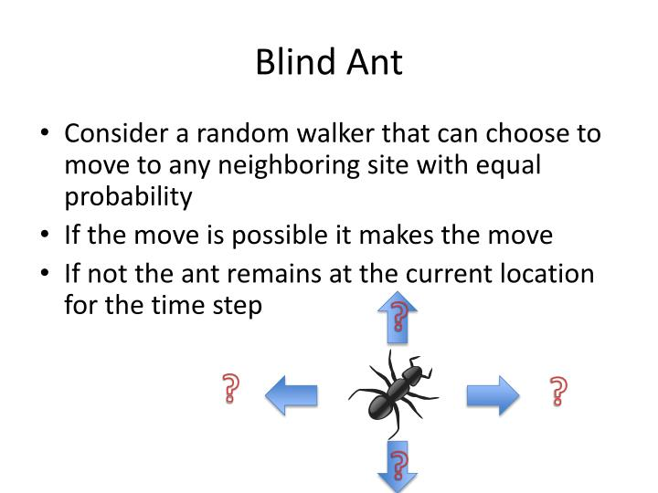 Blind Ant