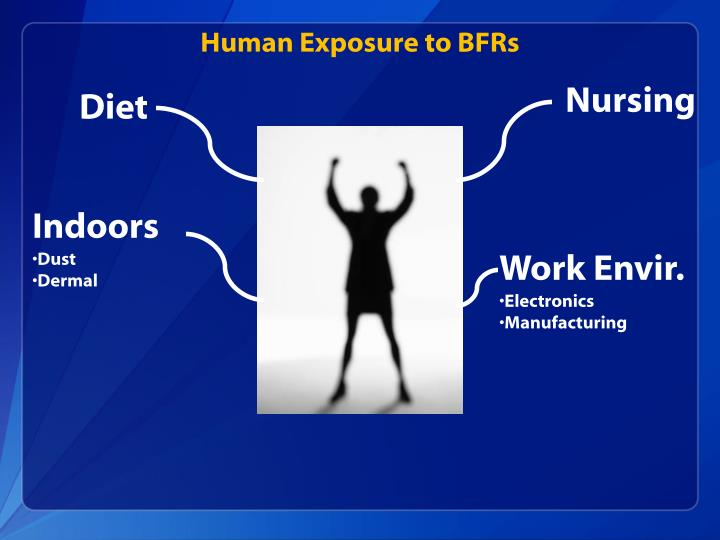 Human Exposure to BFRs