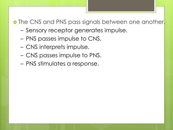 Sensory receptor generates impulse.