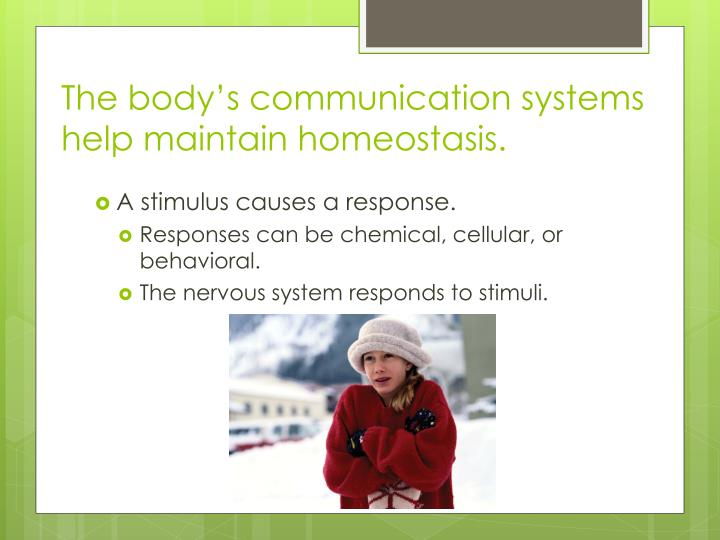 The body's communication systems help maintain homeostasis.
