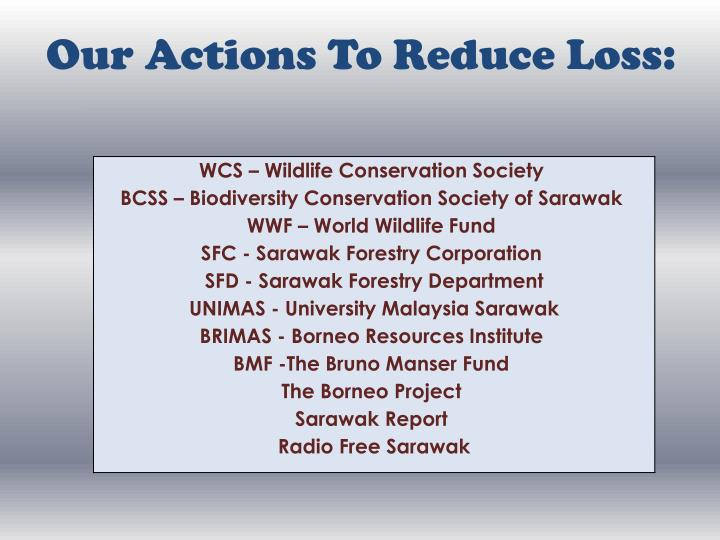 Our Actions To Reduce Loss:
