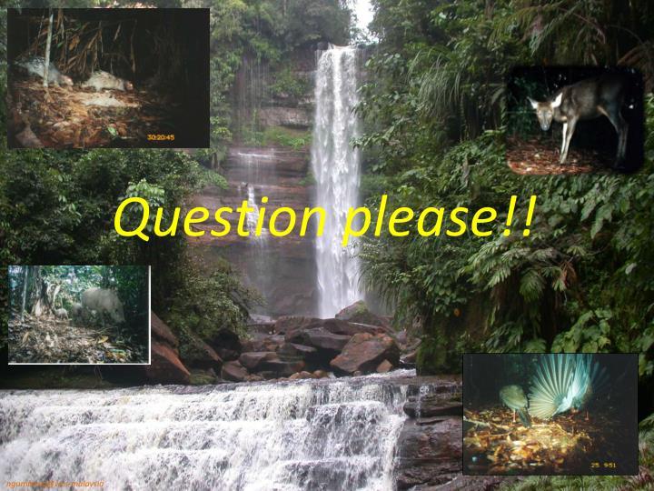 Question please!!