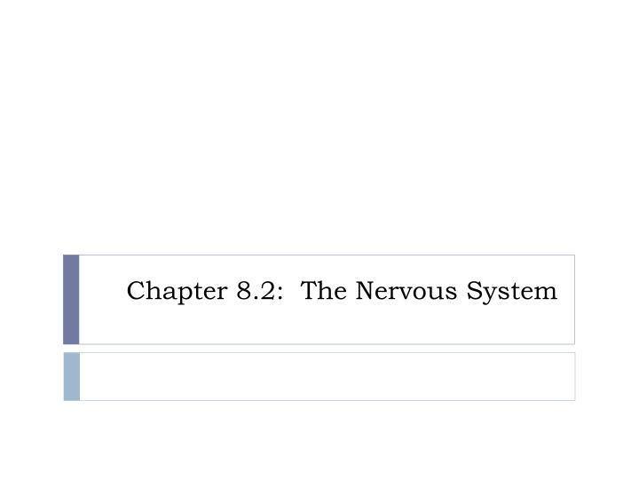 Chapter 8.2:  The Nervous System