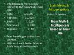 brain myths misperceptions14