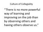 culture of collegiality3