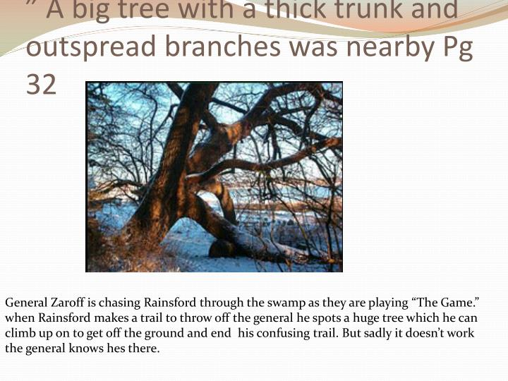 """ A big tree with a thick trunk and outspread branches was nearby Pg 32"
