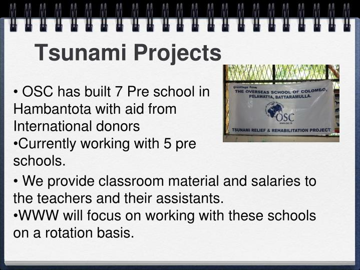 Tsunami Projects