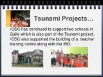 tsunami projects1