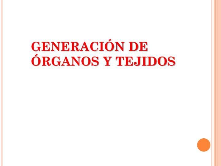 GENERACIÓN DE ÓRGANOS Y TEJIDOS