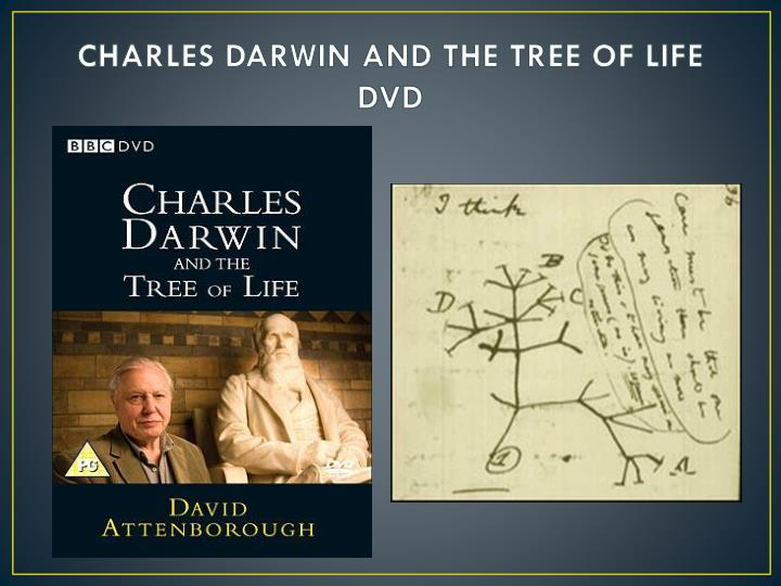 CHARLES DARWIN AND THE TREE OF LIFE DVD