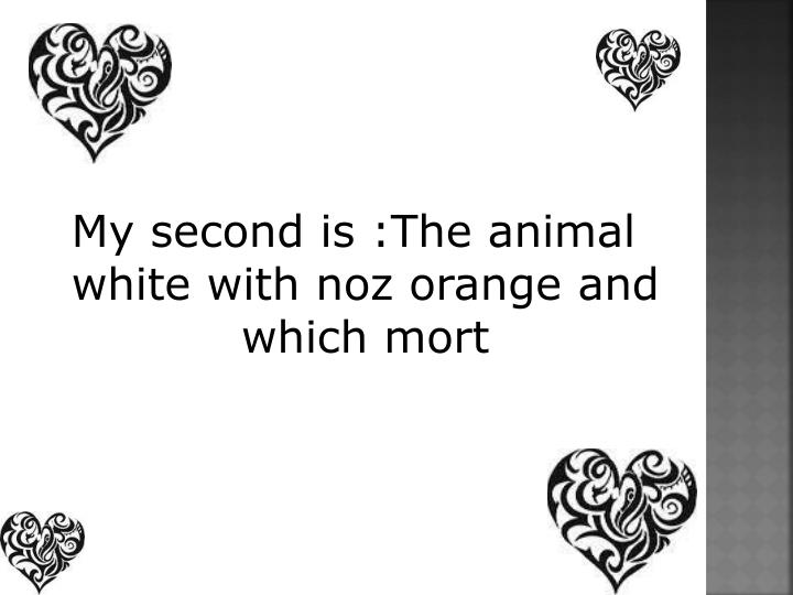 My second is :The animal white with noz orange and which mort