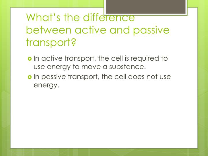 What's the difference between active and passive transport?