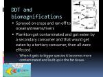 ddt and biomagnifications