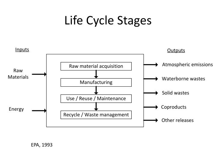 Life Cycle Stages