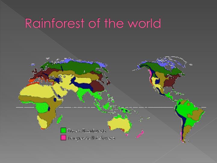 Rainforest of the world