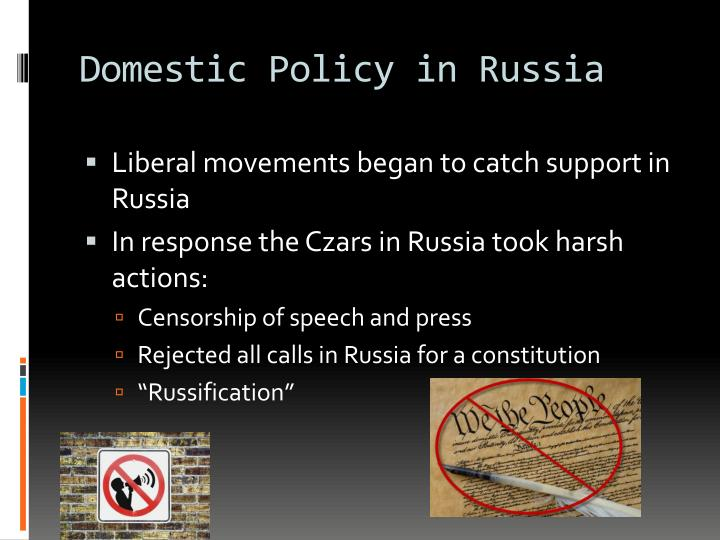 Domestic Policy in Russia