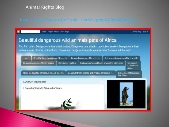 Animal Rights Blog