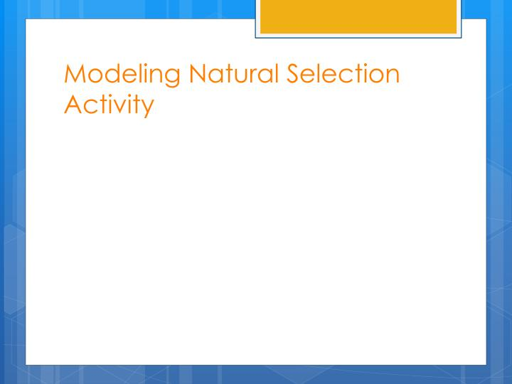Modeling Natural Selection Activity
