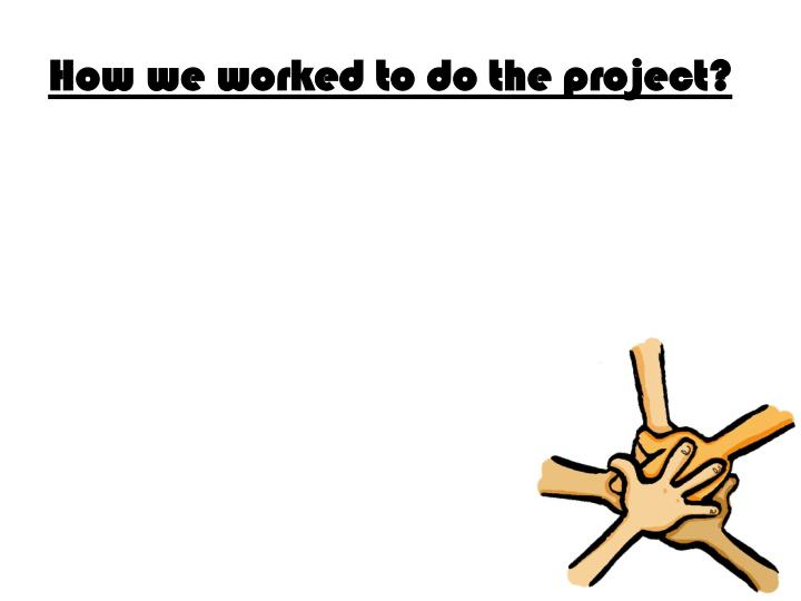How we worked to do the project