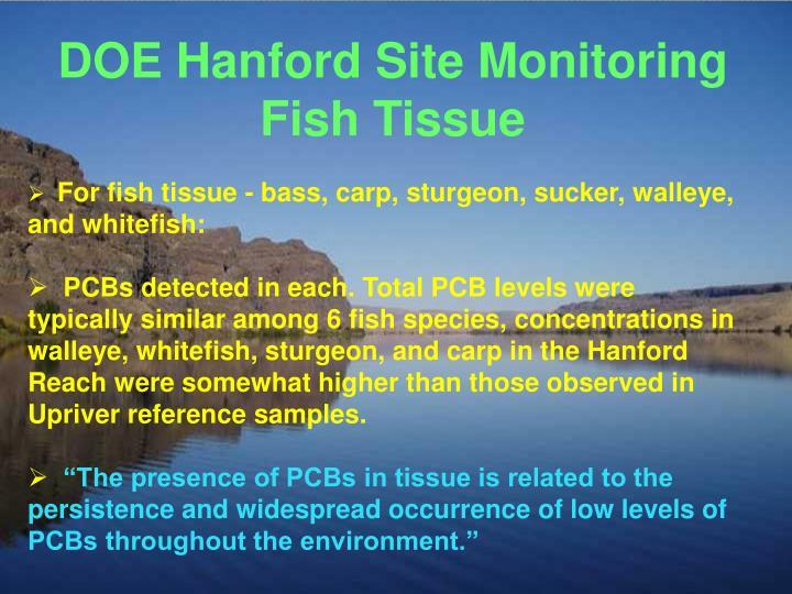 DOE Hanford Site Monitoring