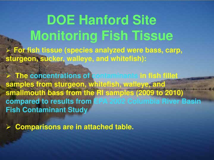 DOE Hanford Site Monitoring Fish Tissue
