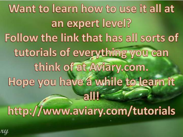 Want to learn how to use it all at an expert level?