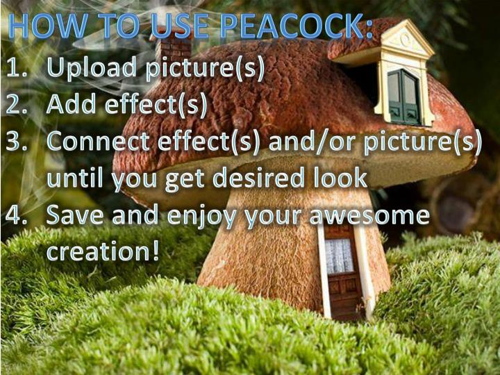 How to use peacock: